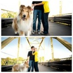 Dog-engagementshoot