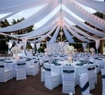 Outdoor_Backyard_Wedding