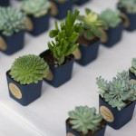 Plant_placecards