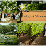 Venue of the Week- B.R. Cohn Winery